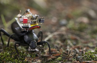 GoPro Hero Cam for Insects : High Quality Camera Backpack Developed for Insects and Tiny Robots
